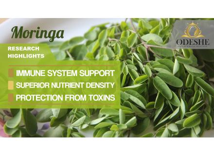 Moringa: A Model Superfood